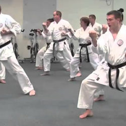 Kihon - The fundamentals of Karate